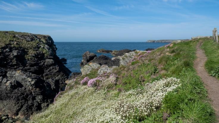 CoastalPath-10065.jpg
